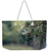 The Needles Weekender Tote Bag