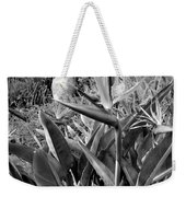 Nepenthe Bird Of Paradise B And W Weekender Tote Bag