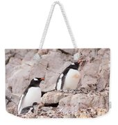 Nesting Gentoo Penguins Weekender Tote Bag