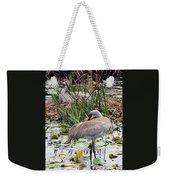 Nesting Sandhill Crane Pair Weekender Tote Bag by Carol Groenen