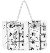 Neuroglia Cells Illustrated By Cajal Weekender Tote Bag by Science Source