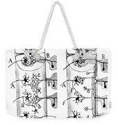Neuroglia Cells Illustrated By Cajal Weekender Tote Bag