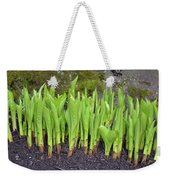 New Green Spring Shoots Weekender Tote Bag