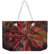 New Growth On A Shea Tree Weekender Tote Bag