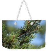 New Growth Pinecone At Chicago Botanical Gardens Weekender Tote Bag