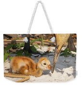 New Sunny Day Weekender Tote Bag