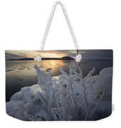 New Year's Eve, Frozen Shrub Weekender Tote Bag