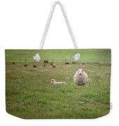 New Zealand Sheep Weekender Tote Bag