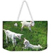 Newborn Goats Weekender Tote Bag