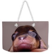Newborn Puppy   Weekender Tote Bag