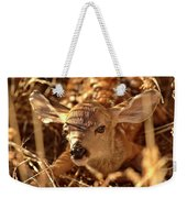 Newly Born Fawn Hiding In A Saskatchewan Field Weekender Tote Bag