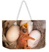 Newly Hatched Tree Swallow Weekender Tote Bag