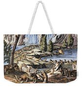 Niagara Falls: Beavers, 1715 Weekender Tote Bag
