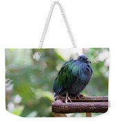 Nicobar Pigeon Weekender Tote Bag