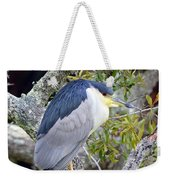 Night Heron Weekender Tote Bag