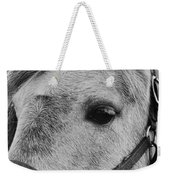 Noble Horse Weekender Tote Bag