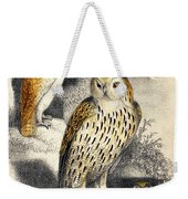 Nocturnal Scene With Three Owls Weekender Tote Bag