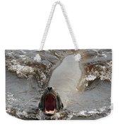 Noisy Sea Lion Weekender Tote Bag