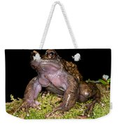 Noras Spiny Chest Frog Weekender Tote Bag