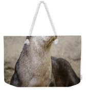 North American Otter Nature Girl Weekender Tote Bag
