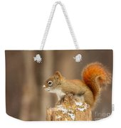 North American Red Squirrel In Winter Weekender Tote Bag