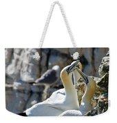 North Atlantic Gannets Weekender Tote Bag