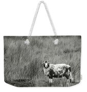 North Yorkshire Moors Sheep Weekender Tote Bag
