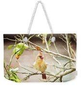 Northern Cardinal Female - Digital Painting Weekender Tote Bag