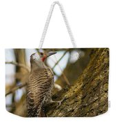 Northern Flicker Woodpecker 1 Weekender Tote Bag