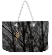 Northern Hawk-owl 22 Weekender Tote Bag