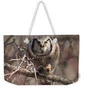 Northern Hawk Owl Having Lunch 9417 Weekender Tote Bag