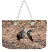 Northern Mockingbird Weekender Tote Bag