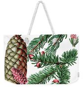 Norway Spruce, Pinus Abies Weekender Tote Bag