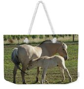 Norwegian Fjord Horse And Colt Weekender Tote Bag