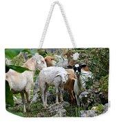 Nosy Sheep Weekender Tote Bag