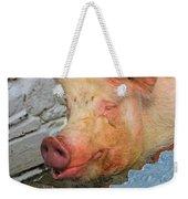 Not A Piglet Anymore Weekender Tote Bag