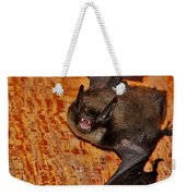 Not A Pretty Picture Weekender Tote Bag