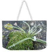 Not Quite A Roof Garden Weekender Tote Bag