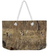 Nothing But White Tails Weekender Tote Bag