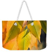 November Colors Weekender Tote Bag