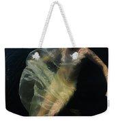 Celestial Body Weekender Tote Bag