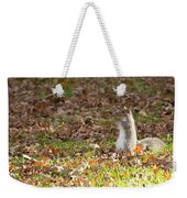 Nuts For Fall Weekender Tote Bag
