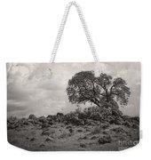 Oak In Rock Field Weekender Tote Bag