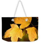 Oak Leaf Trio Weekender Tote Bag