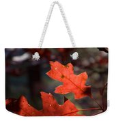 Oak Leaves Aglow Weekender Tote Bag