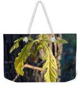 Oak Leaves In May Dawn Light Weekender Tote Bag