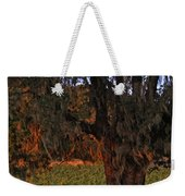 Oak Tree And Vineyards In Knight's Valley Weekender Tote Bag