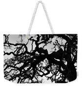Oak Tree In Winter Detail - Amador County, California Weekender Tote Bag