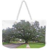 Oak  Tree  Jennings  Louisiana Weekender Tote Bag