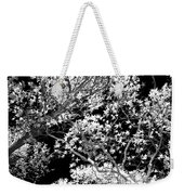 Oak Tree Light Weekender Tote Bag